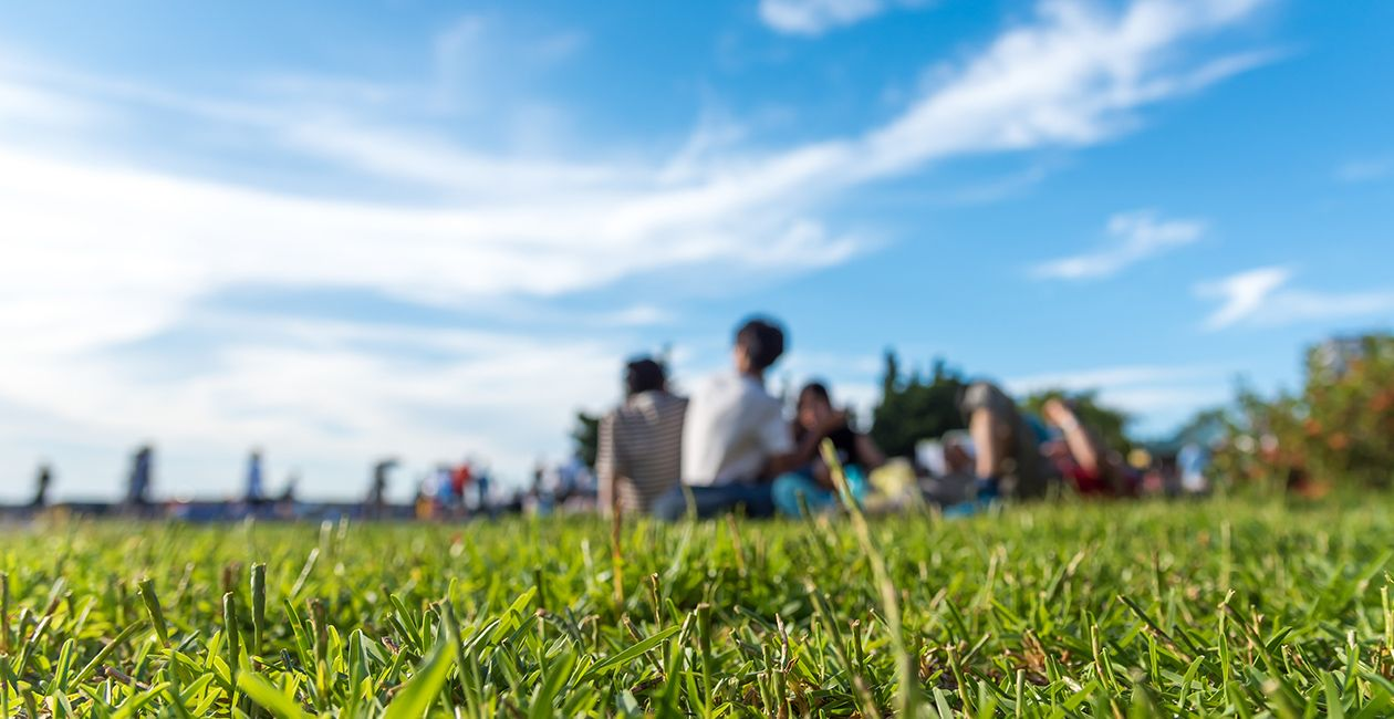 People having fun on a picnic on the grass with bright blue sky.